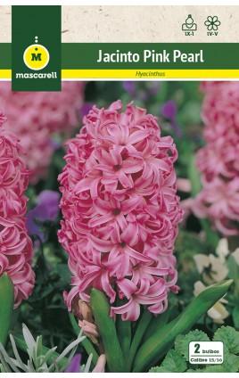 Jacintos Pink Pearl