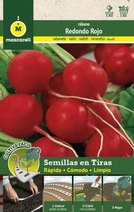 Radish Redondo Rojo - STRIP 5 m