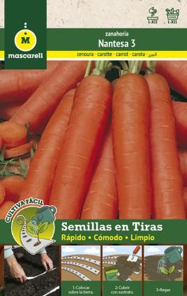 Carrot Nantesa - STRIP 5 m