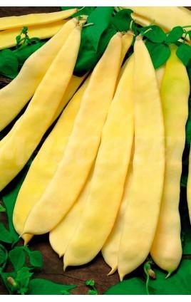 Bean SUPERNANO GIALLO