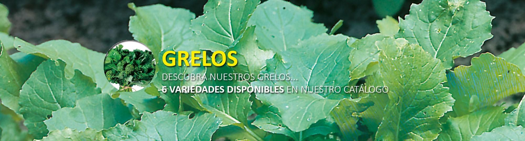 Grelos
